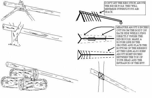 野外求生简单木头搭建的庇护所