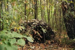 树叶庇护所,纯天然
